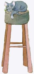 cat_stool